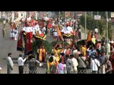 Decorated elephants parade at the Jaipur Elephant Festival a midst Holi fervor!