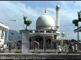 Pigeons are safe at Jama Masjid, Srinagar