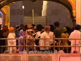Inside the Sikh's holiest shrine in India : Golden Temple, Amritsar