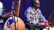 "Toumani & Sidiki Diabate interprètent ""Lampedusa"" dans Musiques du Monde sur #RFI"