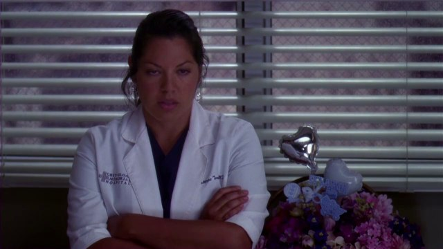 Greys Anatomy Season 10 on DVD - Clip 1 - Close The ER - HD