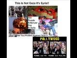 Le Veritable visage du Hamas et des Islamistes et PALLYWOOD
