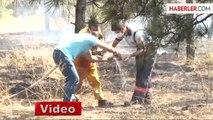 Atatürk Orman Çiftliğinde Orman Yangını