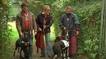 Snelle honden in Oude Pekela - RTV Noord