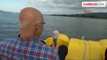 Sapanca Gölü'nde Su Seviyesi Düştü, Tarihi Kalıntılar Ortaya Çıktı