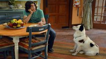 Dog With a Blog Season 2 Episode 22 - Stan Gets Schooled - Full Episode HD