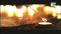 Agar Tum Na Hotay Episode 13 22nd August 2014 Full Episode