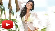 Sunny Leone To Enter Porn Industry Again ?
