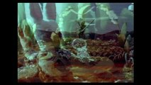 """Winter Carousel (1958) """"Carrousel Boreal"""" (Ladislaw Starewitch) French Stop-Motion"""