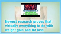 Flat Belly Forever-Flat Belly Forever Review-Truth About The Flat Belly Forever System Video
