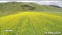 La Lenticchia di Castelluccio di Norcia (Linea Verde Umbria)