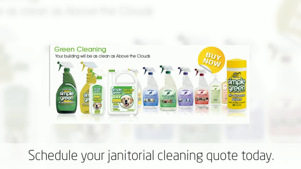 Minneapolis Cleaning Service