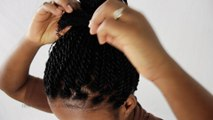 Quick Twists Senegalese / Rope Twists On Your Own Natural Hair Tutorial Part 4 of 8