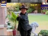 Bulbulay Episode 270 ARY Digital Drama Full Episode - 28th August 2014