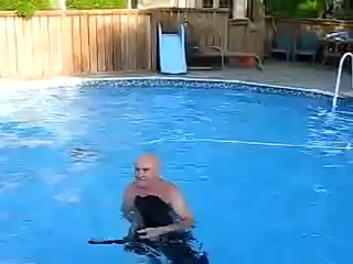 Amazing Rottweiler loves swimming.