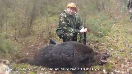 Sanglier 240 kg Biélorussie
