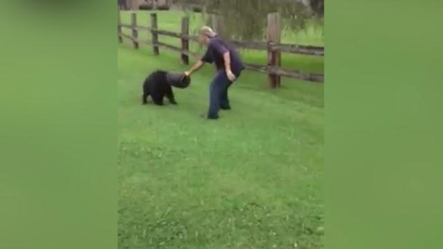 Un ours avec un seau sur la tête aidé par des citoyens