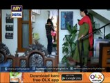 Koi Nahi Apna - Last Episode - 3rd September 2014
