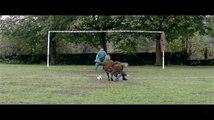 Believe - Trailer for Believe