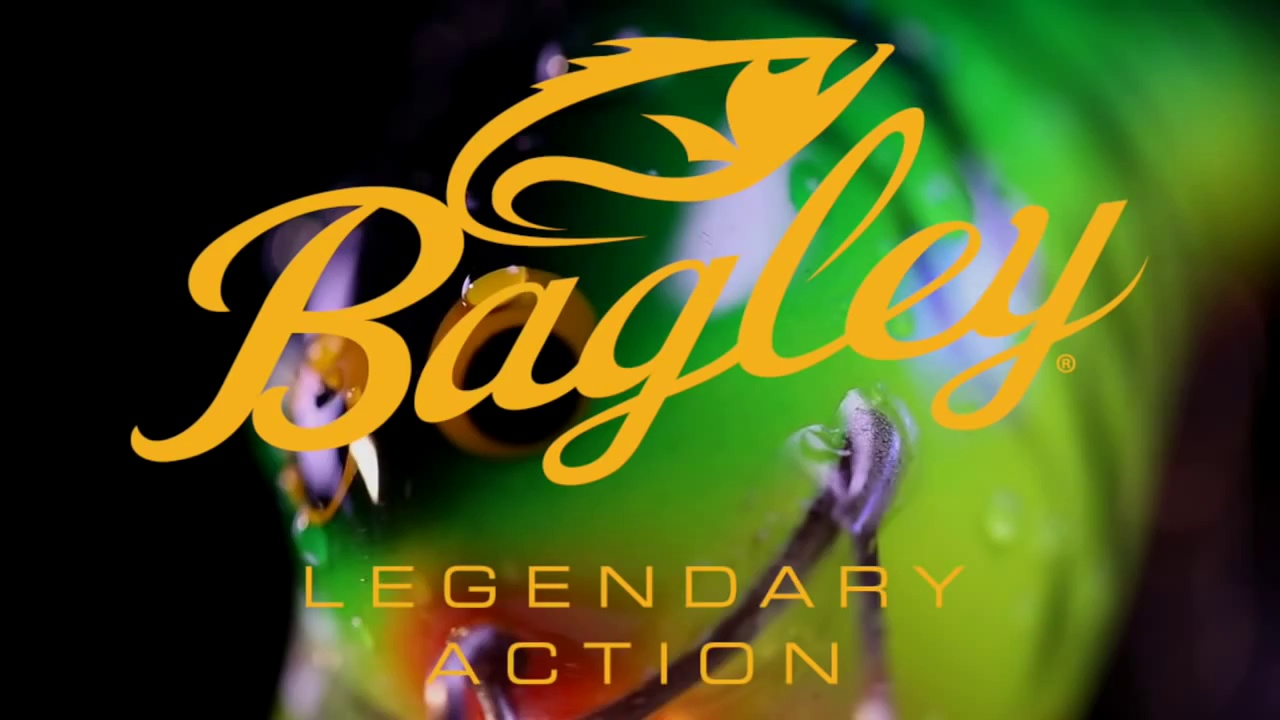 Bagley Bait Fishing Lures – Balsa B