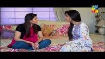 Agar Tum Na Hotay Episode 24 HUM TV Drama latest Episode [8 September 2014