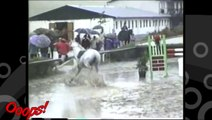 Funny Animals Funny Home Videos Hilarious Horse Act Ever