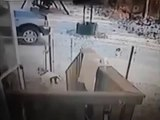 When Crazy Animals Attack Vicious cat with rabies attack caught on CCTV ~ Best Funny Animals 2014