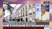Immobilier: que peut-on attendre du nouveau dispositif Pinel?: Dominique de Noronha, dans Intégrale Placements – 10/09