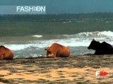 """Fashion Show """"Marella Ferrera"""" Haute Couture Women Spring Summer 2005 Rome 2 of 4"""