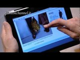 """""""Burberry"""" Spring Summer 2012 London 3 of 3 pret a porter Backstage & Interviews by FashionChannel"""
