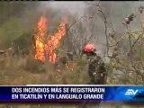 Tres incendios consumieron más de treinta hectáreas de bosque en Latacunga