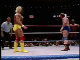 Hulk Hogan & Mister T. vs Paul Orndorff & Roddy Piper - WrestleMania I