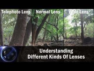 Understanding Different Kinds Of Lenses || Shraddha Kadakia