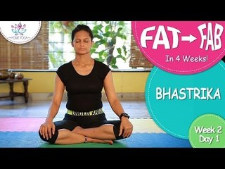 Lose Weight In 4 Weeks || Week 2 - Day 1 || Bhastrika