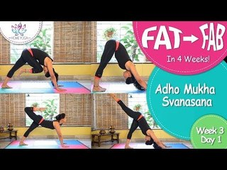 Lose Weight In 4 Weeks || Week 3 - Day 1 || Adho Mukha Svanasana