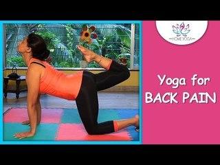 Vyaghrasana ||  The Tiger Pose ||  Cure Back Pain With Yoga