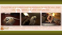 Dubai Kennels & Cattery Share Some Excellent Pet Care Tips