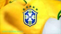 Nike Football Brasil National Team Home Kit 2013 2014