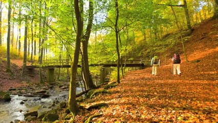 Romantic Germany: Hiking in Rhineland-Palatinate