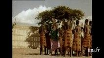 Afrique(s), une autre histoire du 20e siecle
