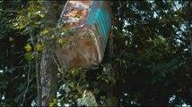 La Forêt contre-attaque - Bande-annonce (VF)