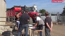 Epandage : La régularité testée sur compost et fumier