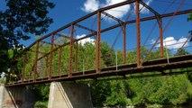 Grand River Chambers Bridge Wildflower Summer