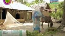 Bangla Eid Natok 2014 (Eid-Ul-Fitr) - Mone Rekho Mitthe - ft Chanchal,Akm Hasan