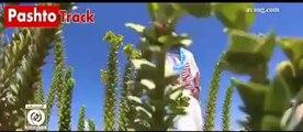 Dokhtareh Sahra Pashto Video Song by Valy Pashtotrack