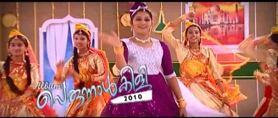 Paarijaatham | Perunnalkili 2010 | Mappila Album Song