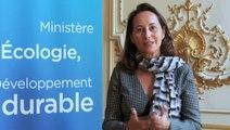 Interview Ségolène Royal sur le projet de loi transition énergétique