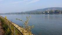 Wasser Ski auf dem Rhein