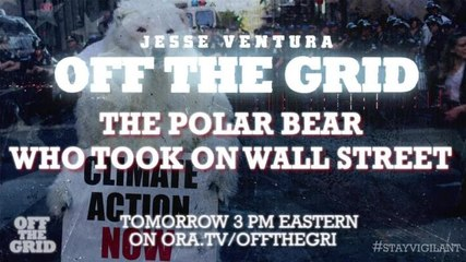 Preview: The Polar Bear Who Took On Wall Street