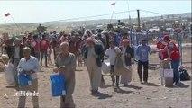 """A Kobané, les Kurdes """"laissés seuls face aux djihadistes"""""""